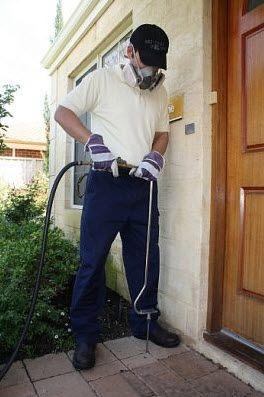 Pest-Control-Expert
